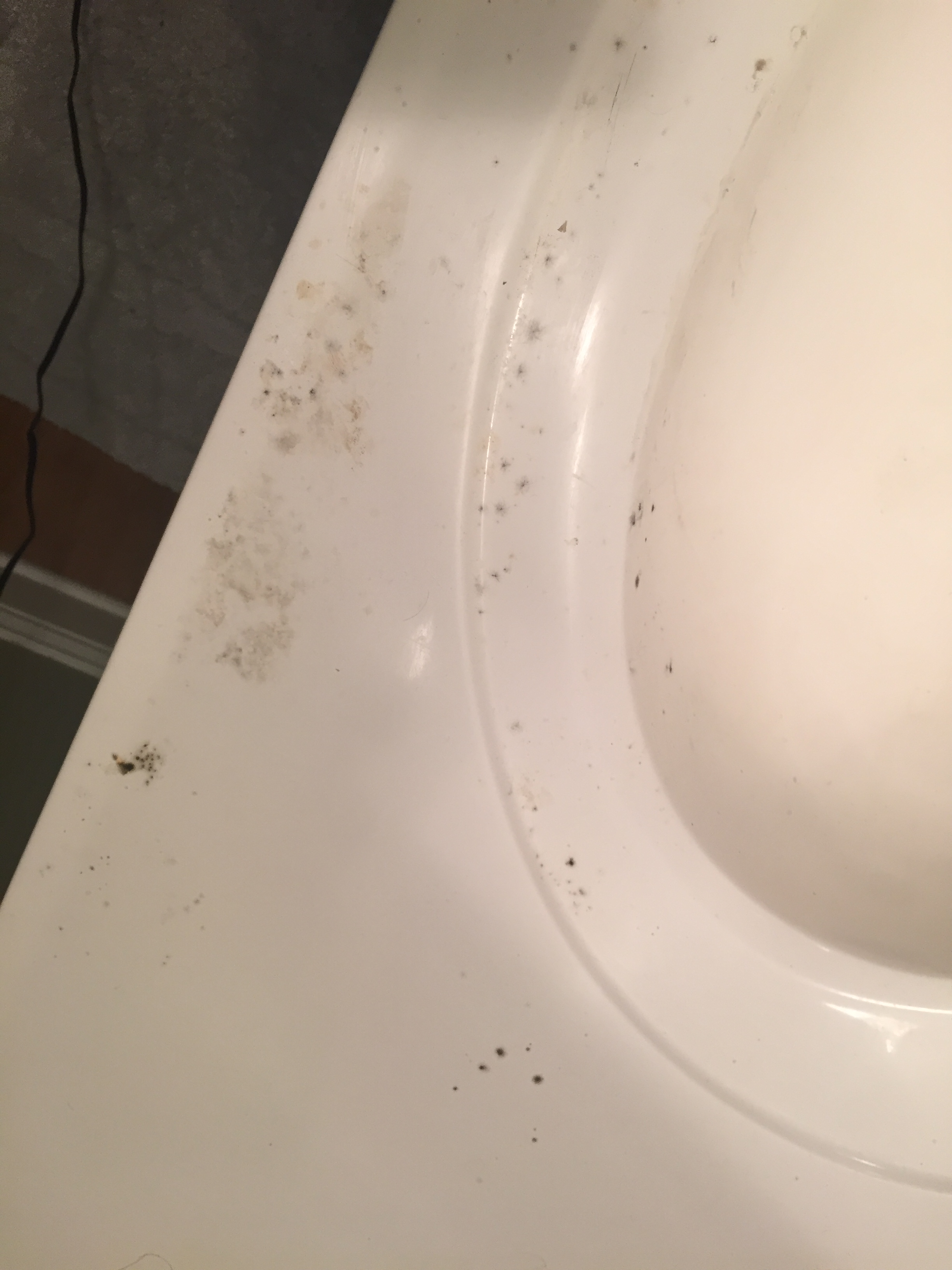 How mold took our stuff archives world wide with katherine for Black mold bathroom sink