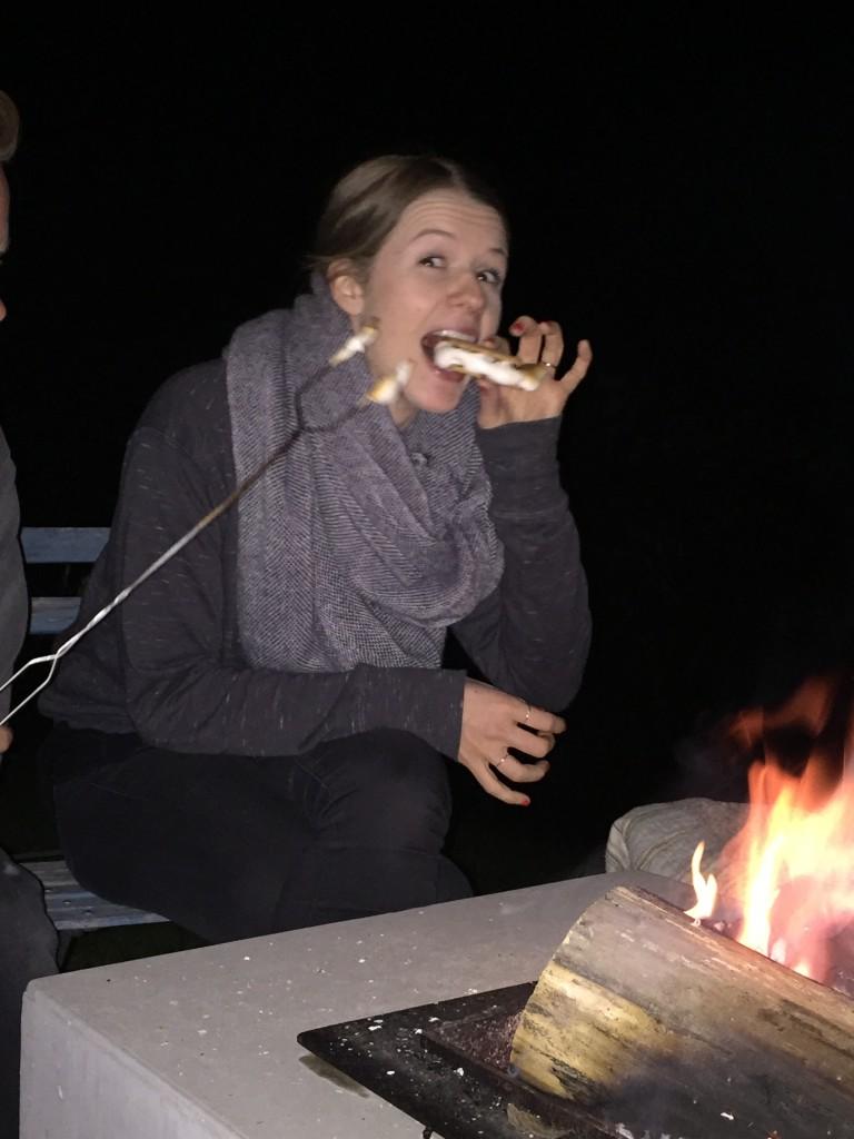 Hannah's 30! American Smores & Bonfires